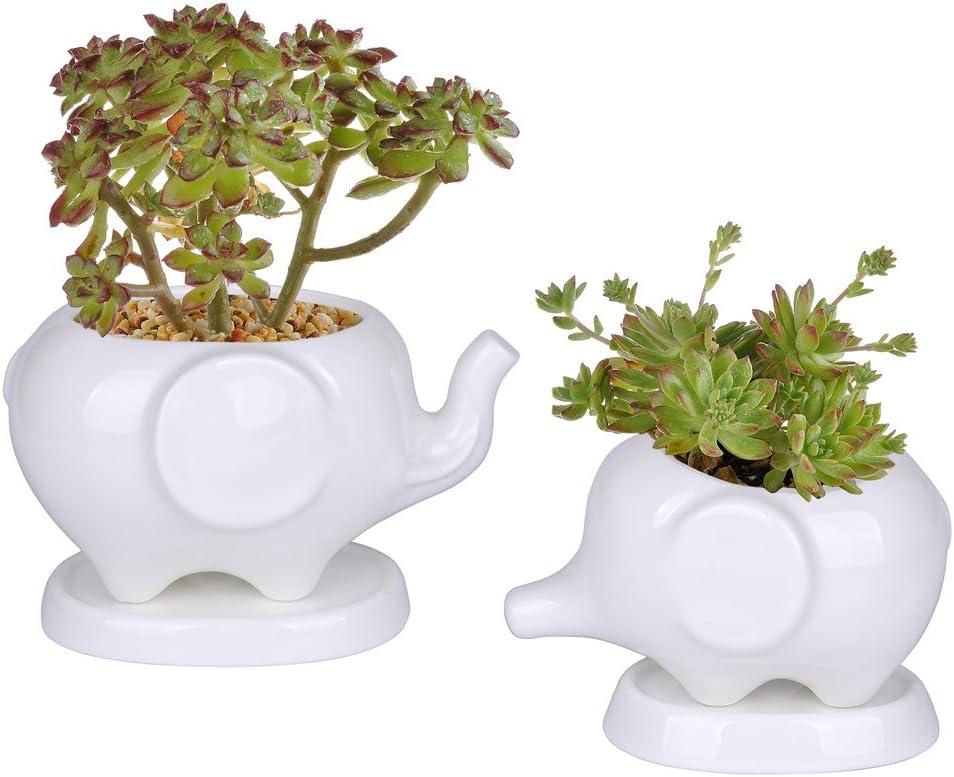 Kawaii Animals Ceramic Flower pot 2 Styles Elephant Succulent Planter Cactus Succulent Plants Flower Cute White Pot 2 Elephants