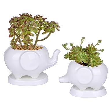 Kawaii Animals Ceramic Flower pot 2 Styles Elephant Succulent Planter Cactus Succulent Plants Flower Cute White Pot (2 Elephants)