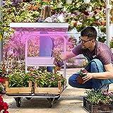 Grow Light LED Growing Lights Indoor Plants Full