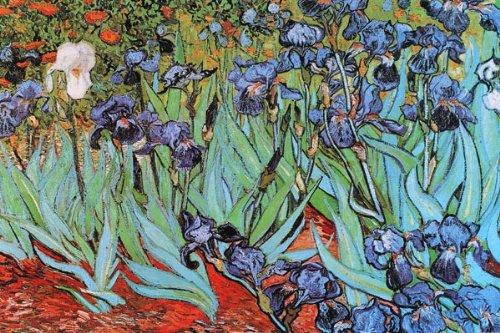 vincent van gogh irises 1890