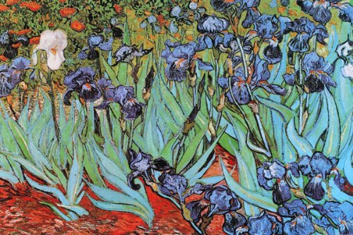 Buyartforless Vincent Van Gogh Irises 1890 Flowers Art Print
