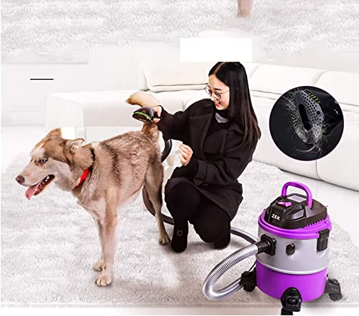Cleaner Aspiradora Pet hogar húmedo y seco pequeño Gato de Mano y ...