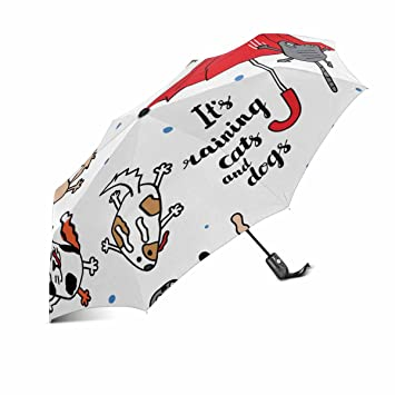 66dc04e4bd25 Amazon.com: InterestPrint Funny It's Raining Cats and Dogs Windproof ...