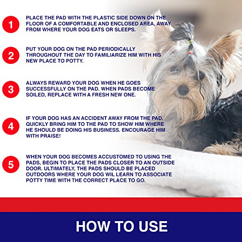 Pouty Pets 100 Puppy Pads - Disposable & Absorbent Training Pad Dogs - Leak-Proof, Tear Resistant, Odor-Eliminating & Anti-Bacterial Potty Pads Pet Attractant - Absorbs Dog Pee Quickly by Pouty Pets (Image #4)
