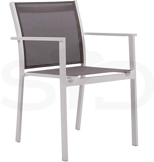2 Sillas con Brazos Palma para jardín y Exterior. Aluminio 1ª Calidad Blanco y Textilene Batyline Arce: Amazon.es: Jardín