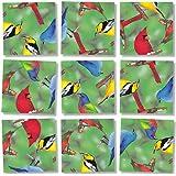 Scramble Squares: North American Birds