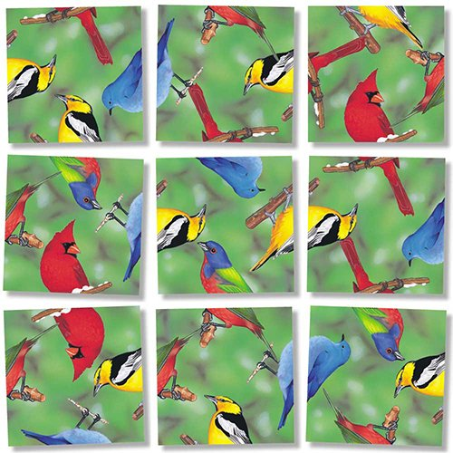 Birds Scramble Squares - Scramble Squares Birds of North America 9 Piece Challenging Puzzle - Ultimate Brain Teaser and Mind Game for Young and Senior Alike - Engaging and Creative With Beautiful Artwork - By B.Dazzle