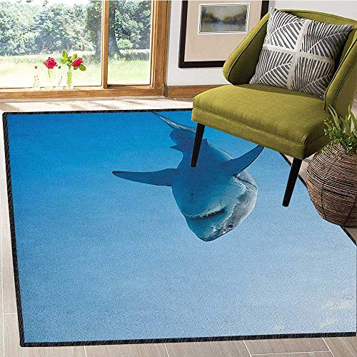 Shark Large Rug Mat,Fish Swimming in The Ocean Underwater Beauty Tropical Island Water Nature Landscape for Hard Floors Pale Blue 67