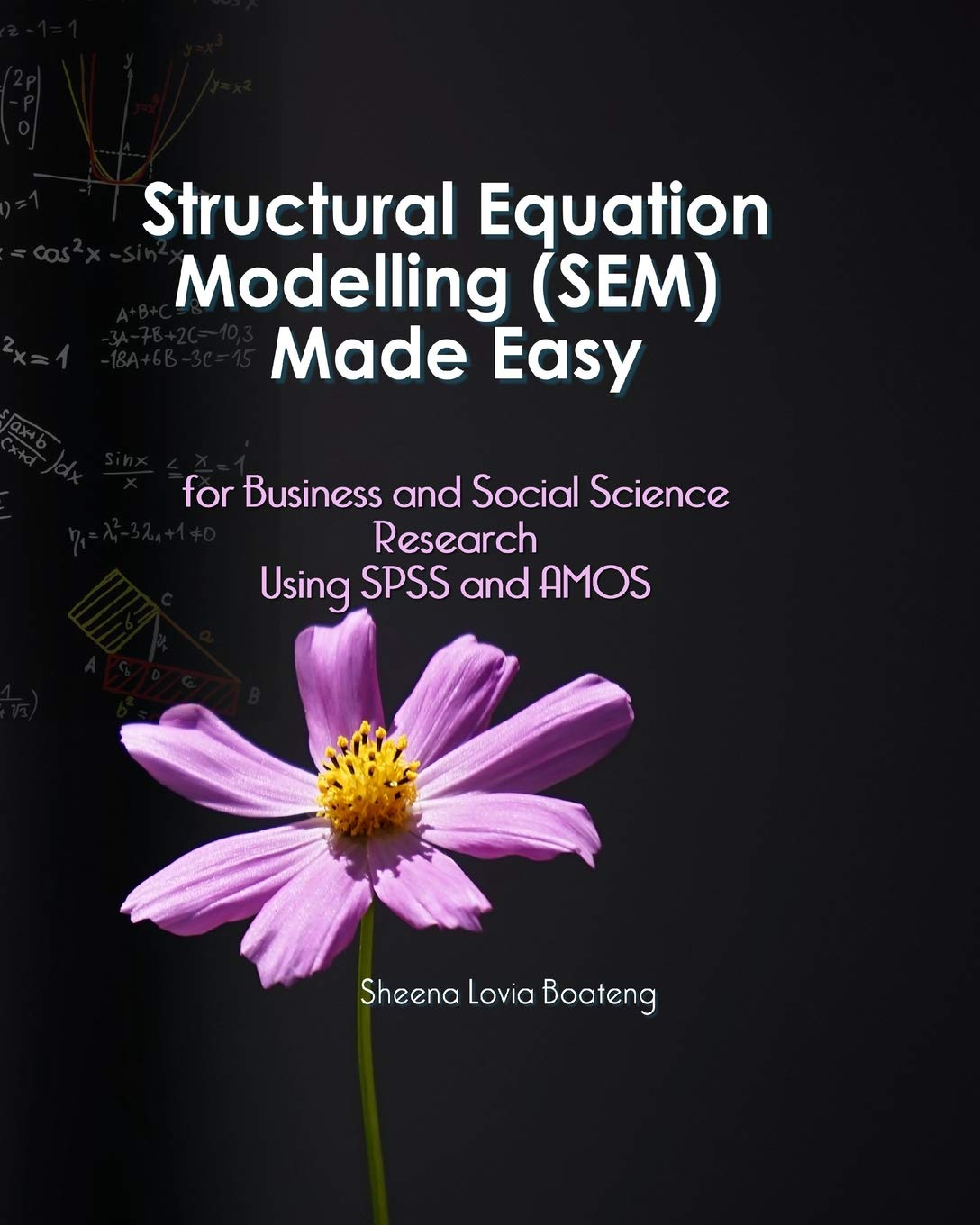 Structural Equation Modelling Made Easy for Business and