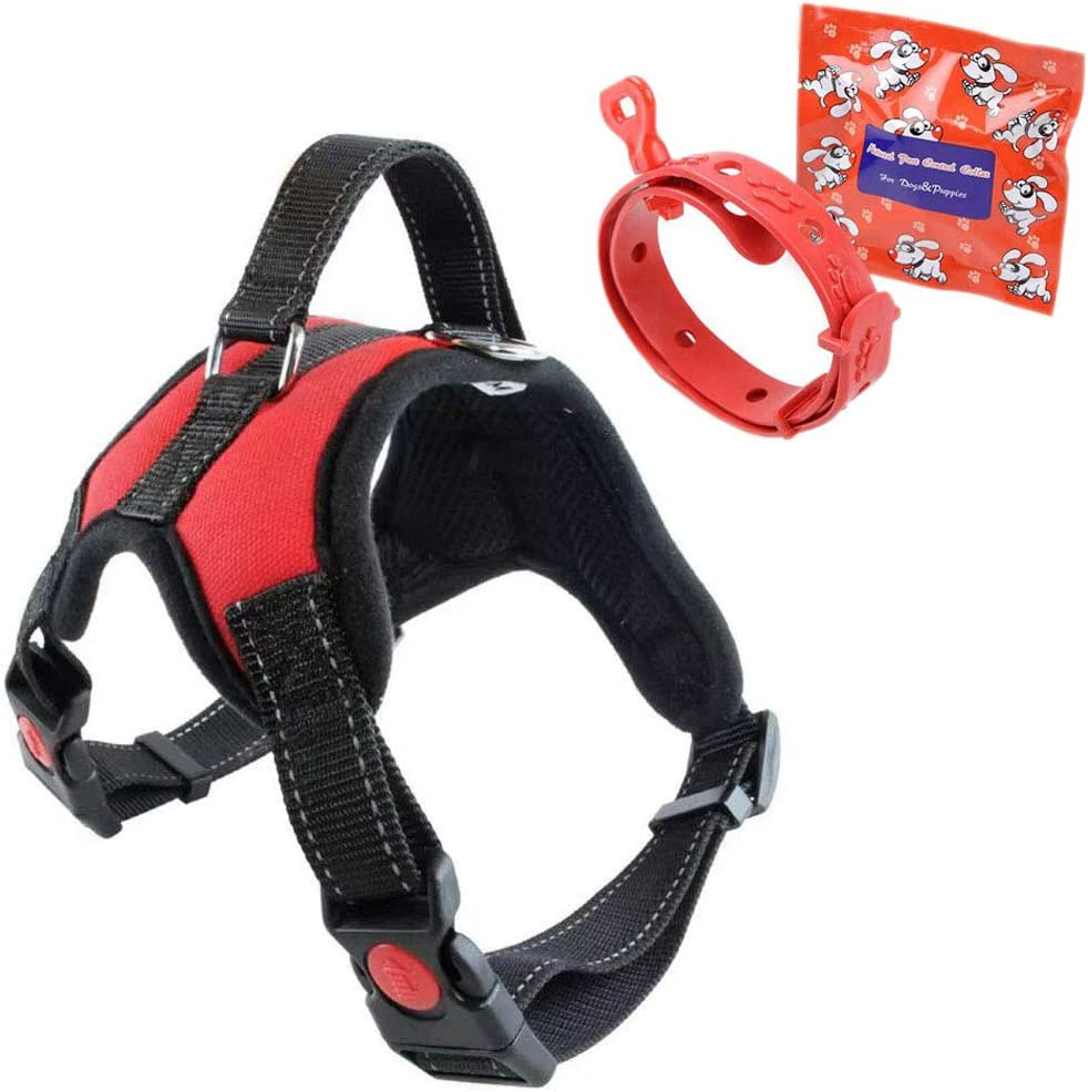 Medium, Black ZuiJia Adjustable dog harness no pull,Breathable small dog harnesses comfortable Free Flea and Tick Collar Included for Small Medium Dog.