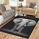 Cheap InterestPrint African Elephant Black And White Polyester Area Rug Floor Mat 7′ x 5′ Feet, Nature Animal Art Throw Rayon Fiber Carpet Rugs for Home Living Dining Room Decoration
