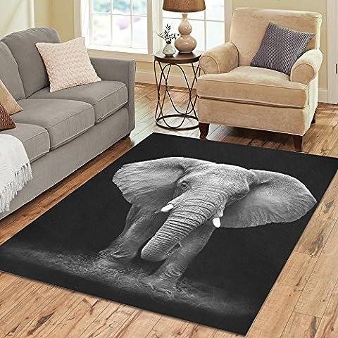 InterestPrint African Elephant Black And White Polyester Area Rug Floor Mat 7' x 5' Feet, Nature Animal Art Throw Rayon Fiber Carpet Rugs for Home Living Dining Room (Elephant Floor Rug)