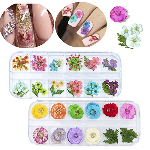 MissBabe 2Pack/24 Different Colors Natural Real Dried Flowers Nail Art Decoration Sticker For 3D Nail Art Acrylic UV Gel Tips - Acrylic Flowers