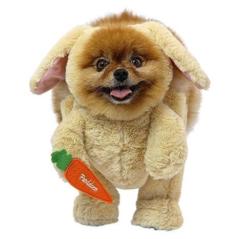 1248b8601c2724 Pandaloon Bunny Rabbit Dog Pet Halloween Costume Set - AS SEEN ON Shark Tank  - Walking