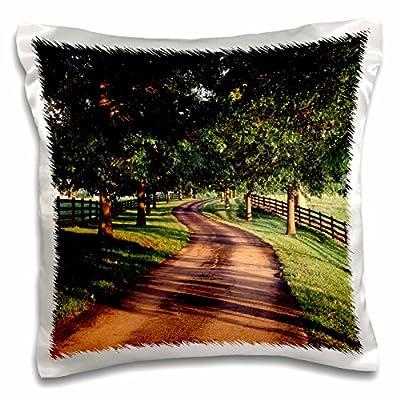 Danita Delimont - Kentucky - Trees and country lane, Bluegrass area, Kentucky, USA - US18 AJE0556 - Adam Jones - 16x16 inch Pillow Case (pc_144454_1)