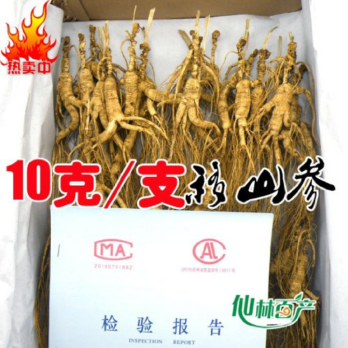200 Grams (7 oz.) Dry Transplant Wild Ginseng Root Herbs, about 20 Years, relative integrity by YUNDAO PRODUCTION