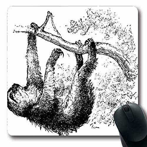 Ahawoso Mousepad for Computer Notebook Nature Ancient Sloth Vintage Engraved Natural Black History Engraving Antique Biology Design Old Oblong Shape 7.9 x 9.5 Inches Non-Slip Gaming Mouse - Engraving 1880 Antique
