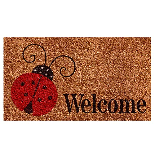 (Calloway Mills 121431729 Ladybug Welcome Doormat, 17