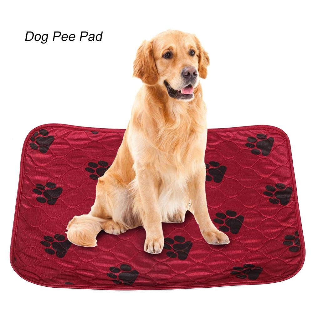 Haofy Perro Pee Pad Reutilizable Impermeable Perro Almohadilla de Pee Cama Lavable Orina Mat para Mascotas Perros Cachorro Cachorro Interior y Exterior Uso ...
