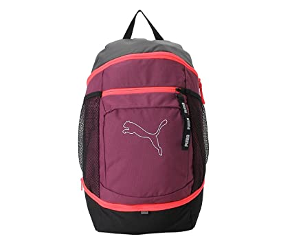 825568fa3cf0 Puma 22 Ltrs Purple Backpack (7567203)  Amazon.in  Bags
