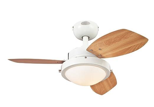 Amazon.com: Westinghouse 7247200 wengue two-light Reversible ...
