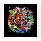 Sttech1 DIY Diamond Painting Kits for Adults, 5D Diamond Painting Full Drill Paint with Diamonds Hell Asura for Home Wall Decor By Number Kits (Tiger)