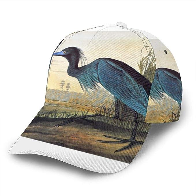 Audubon Little Blue Heron - Gorra de béisbol Ajustable para Mujer ...