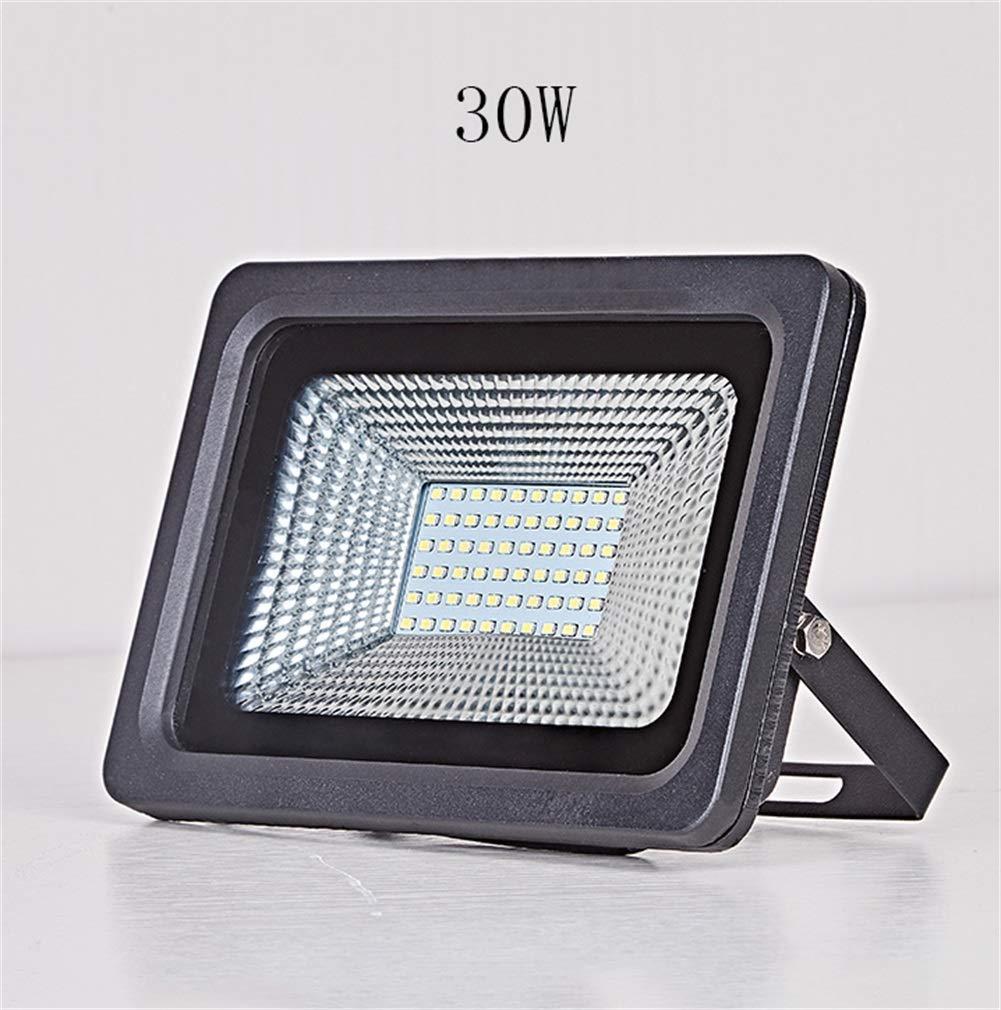 Csndice Home LED Faretto Da Esterno,Park Square Impermeabile Spotlight Fabbrica Tunnel Searchlight IP65 66 (colore   Luce bianca-30W)
