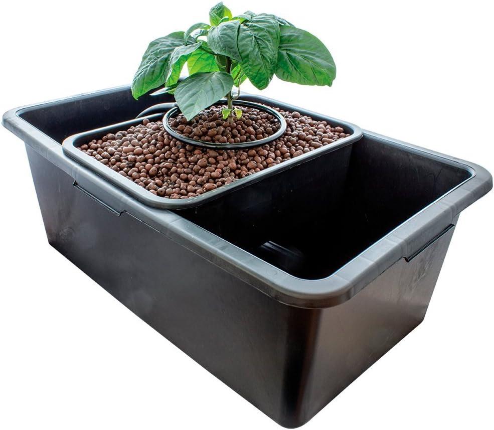 Sistema de cultivo hidropónico Baby Bubbler Kit Hydrogarden PLANT ...