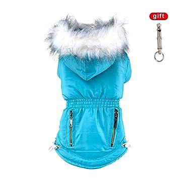 Abrigo de invierno para perros de Handfly, con capucha, color violeta: Amazon.es: Productos para mascotas