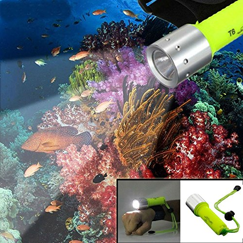 Diving Flashlight, Hangang Bright LED Submarine Light 900 Lumens Scuba Safety Lights Waterproof Underwater Torch or Scuba Diving Outdoor Under water Sports(Include Battery)