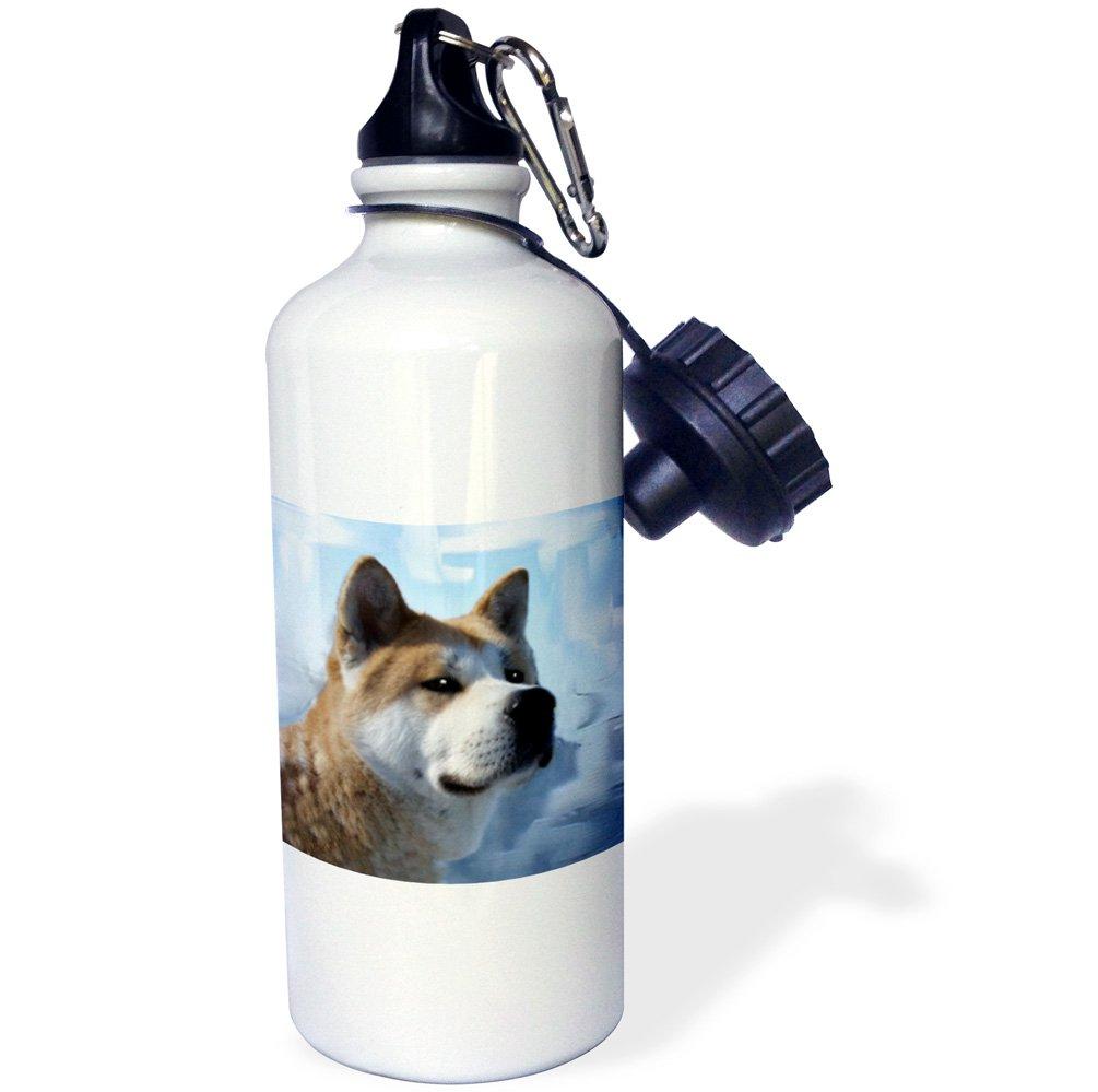 3dRose wb/_4171/_1Akita Portrait Sports Water Bottle White 21 oz