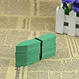 HeroNeo New 100 Pcs 4Inch Plastic Plant Seed Labels Pot Marker Nursery Garden Stake Tags (Green)