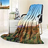 YOYI-HOME Weave Pattern Extra Long Duplex Printed Blanket Goes Down in Desert Prickly pear Cactus Southwest Texas National Park Orange Blue Green Custom Design Cozy Flannel Blanket /W39.5 x H59