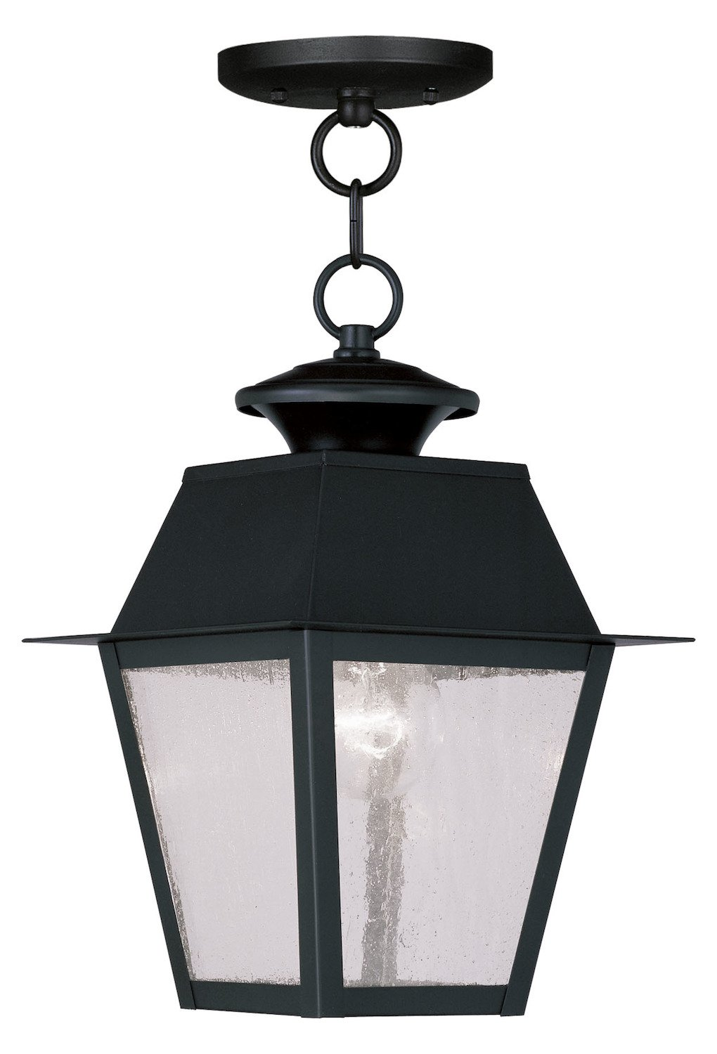 Black Mansfield Outdoor Pendant With 1 Light