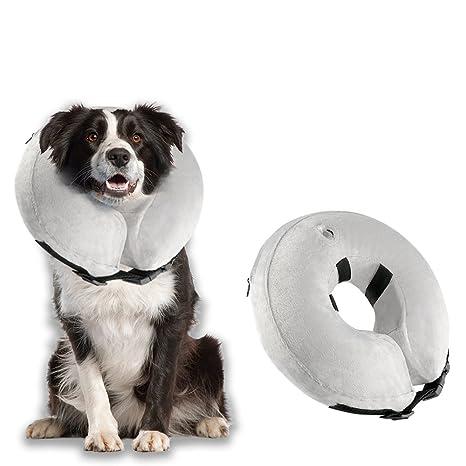 Amazon.com: Airsspu - Collar hinchable para perro, diseño de ...