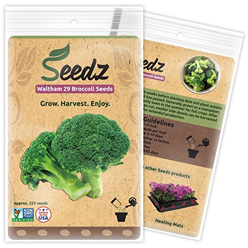 CERTIFIED ORGANIC SEEDS (Apr. 225) - Heirloom Broccoli Seeds - Broccoli Sprouting Seeds - Non GMO, Non Hybrid - USA
