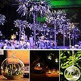 Hanging Glass Candle Holder Crystal Candlestick Candelabrum Micro Landscape Bottle