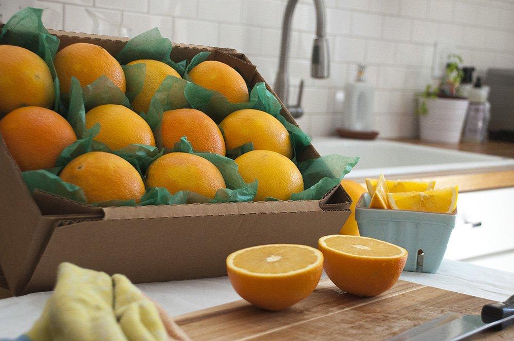 Fresh Florida Juice Oranges, 16 pieces