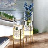 Flower Vase for Decor, Glass Table Vase Set, Clear Vase with Gold Stand, Modern Decorative with Timer LED Lights Battery…
