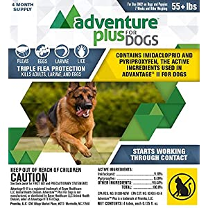 Adventure Plus for Dogs 4pk 55lb+ 62