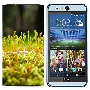 Cubierta protectora del caso de Shell Plástico || HTC Desire Eye ( M910x ) || Planta Naturaleza Forrest Flor 54 @XPTECH