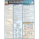 Macroeconomics (Quickstudy: Business)