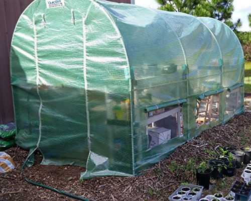 Quictent Reinforced PE Cover 12′ X 7′ X 7′ Portable Greenhouse Large Walk-in Green Garden Hot House