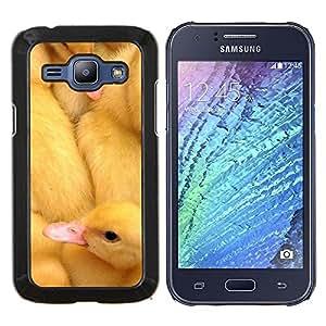 TECHCASE---Cubierta de la caja de protección para la piel dura ** Samsung Galaxy J1 J100 ** --Patos lindos pollitos