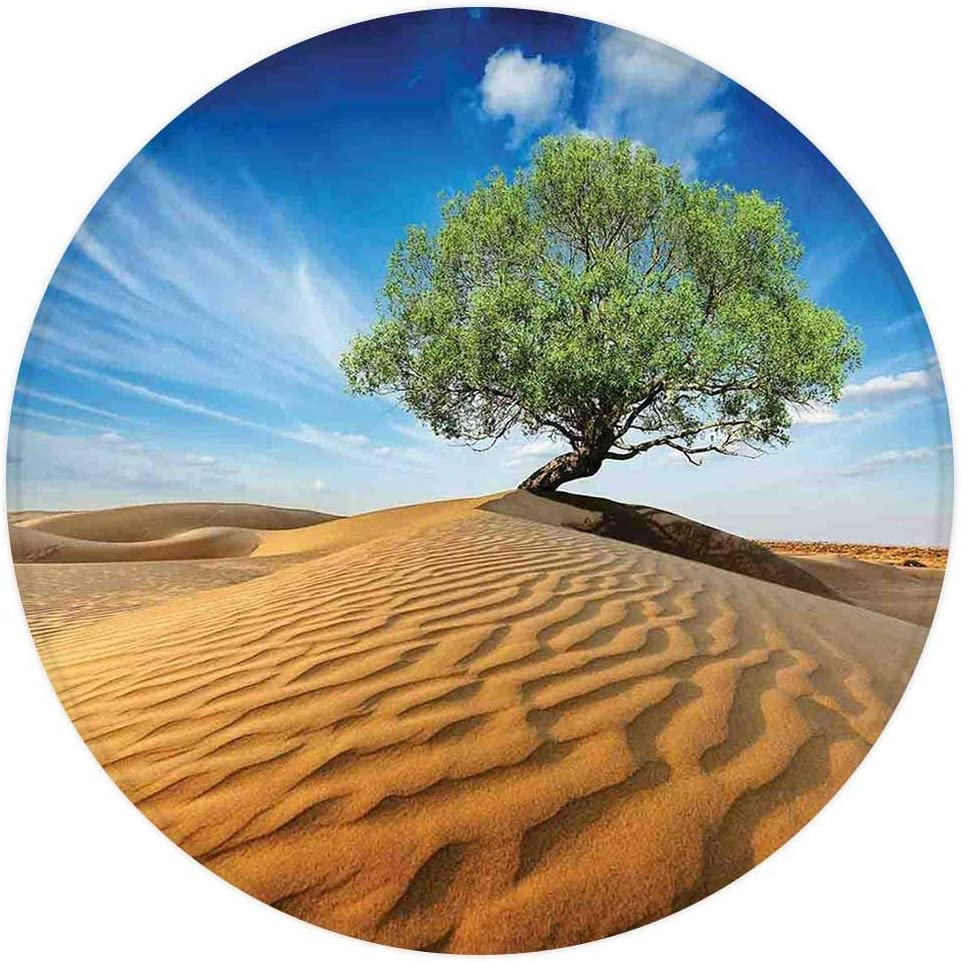 Tree of Life Round Area Rug,Tree in The Desert on Sand Dune Dry But Alive Nature Habitat Life Photo,for Living Room Bedroom Dining Room,Round 3'x 3',Blue Cream Green