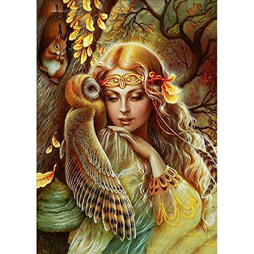 Full Rhinestones Diamond Bling - MXJSUA DIY 5D Diamond Painting by Number Kits Full Drill Rhinestone Embroidery Cross Stitch Pictures Arts Craft for Home Wall Decor 12x16In Owl Squirrel Girl