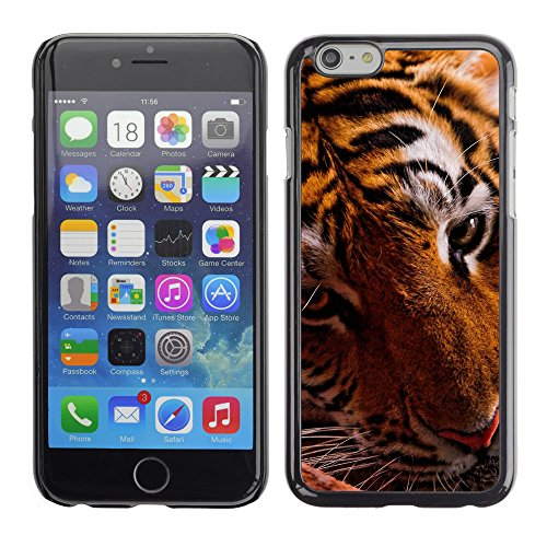 "Premio Sottile Slim Cassa Custodia Case Cover Shell // V00003929 tigre dans l'obscurité // Apple iPhone 6 6S 6G PLUS 5.5"""