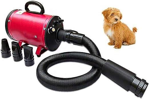 MTFZD 2200W Mascotas soplador, Secador Perro/Secador de Pelo para Perros Gatos/Perros Cuidado secador/Secador de Pelo para Perros/Mascotas Secador(Rojo Azul) (Color : Blue): Amazon.es: Productos para mascotas