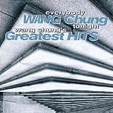 Everybody Wang Chung Tonight - Greatest Hits